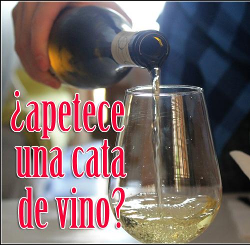 Catas de vino en la provincia de Sevilla